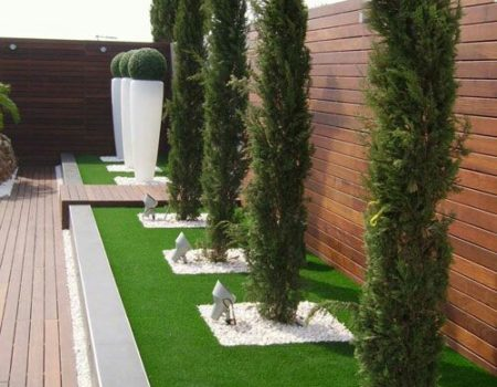 alpinetumi i uređenja dvorišta